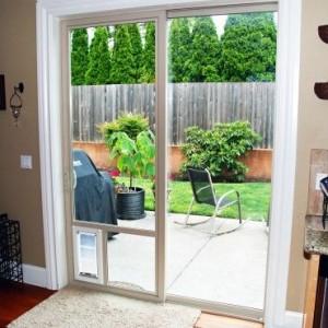 dog doors 5