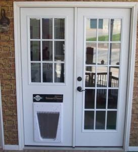 dog doors 8