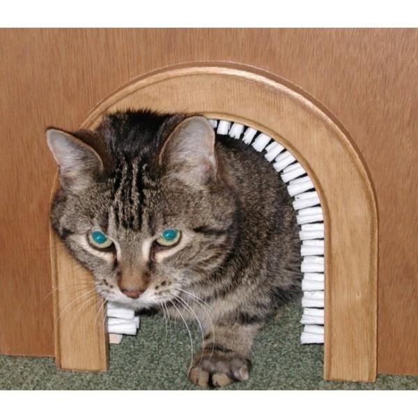 indoor cat door 1
