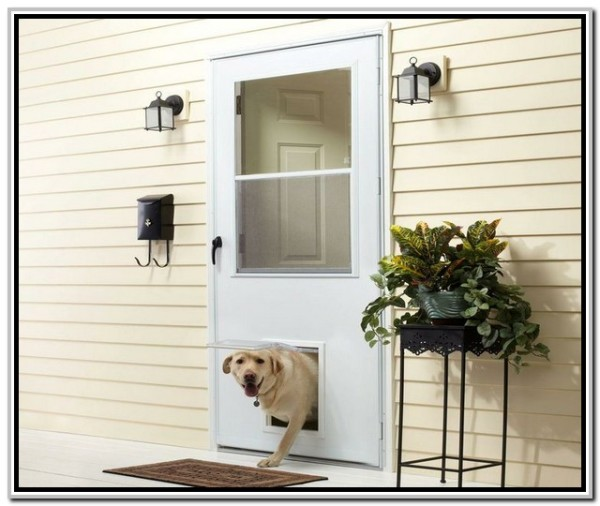 storm door with pet door 1