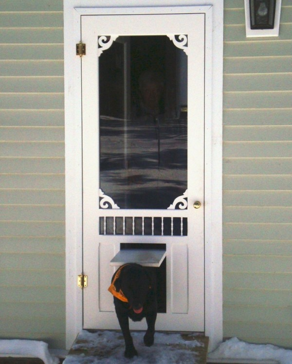 storm door with pet door 3