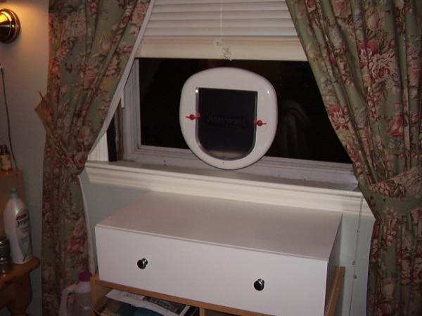 window cat door 1