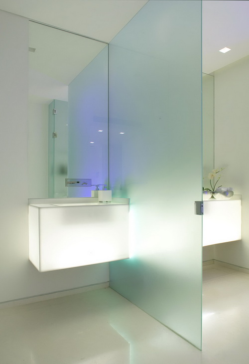 Glass-wall-dividers-bathroom-photo-10