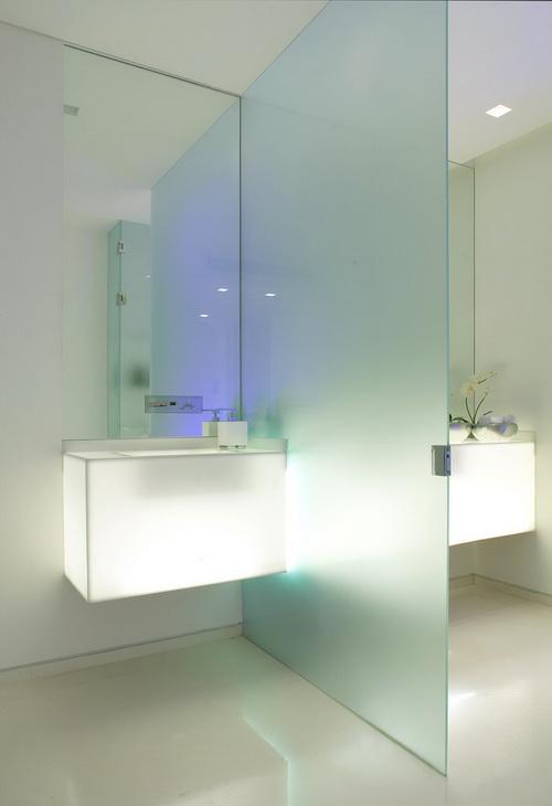Glass-wall-dividers-bathroom-photo-10