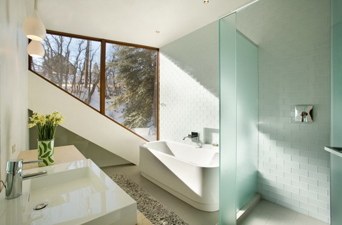 Glass-wall-dividers-bathroom-photo-5