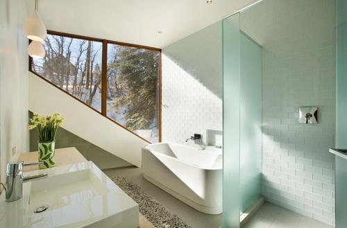 Glass-wall-dividers-bathroom-photo-5