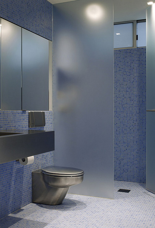 Glass-wall-dividers-bathroom-photo-6