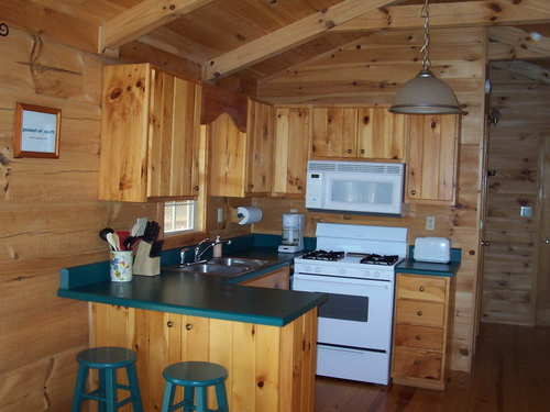 Kitchen-design-ideas-for-log-homes-photo-6