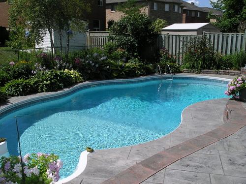 Swimming-pool-backyard-photo-13