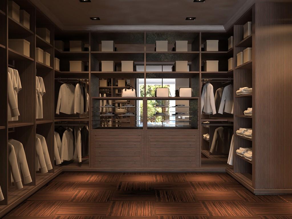 Best walk in closet ideas