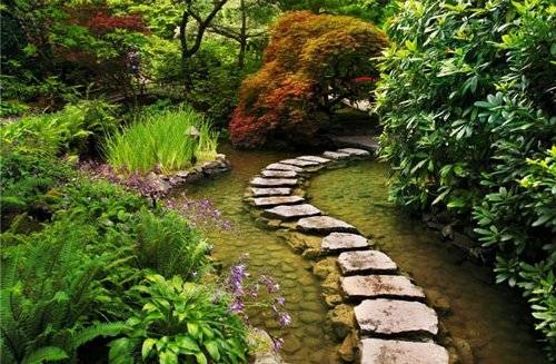 TOP 10 Eco garden design ideas