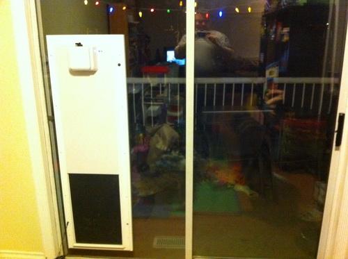 Dog-door-for-screen-door-photo-12
