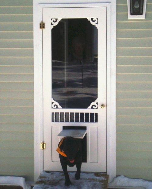 Dog-door-for-screen-door-photo-2
