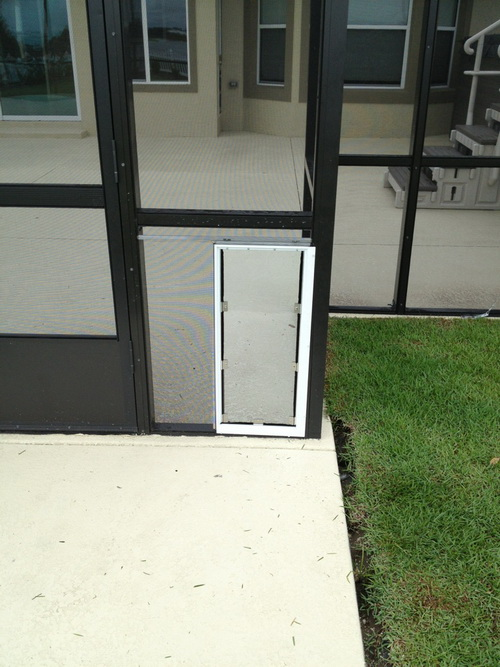 Dog-door-for-screen-door-photo-20