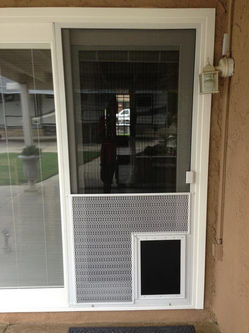 Dog-door-for-screen-door-photo-23