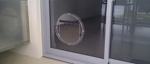 glass-dog-door-photo-15