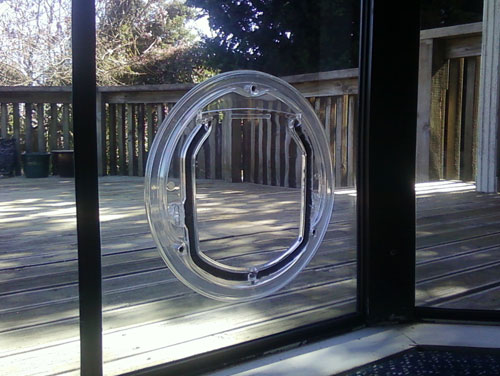 glass-dog-door-photo-22