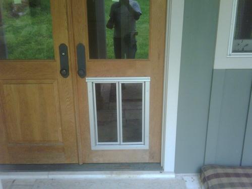 Large-dog-door-photo-16