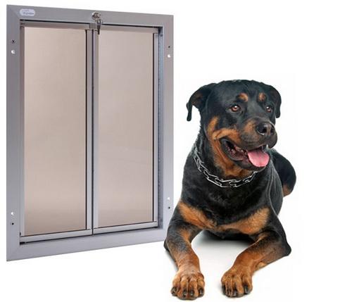 Large-dog-door-photo-8