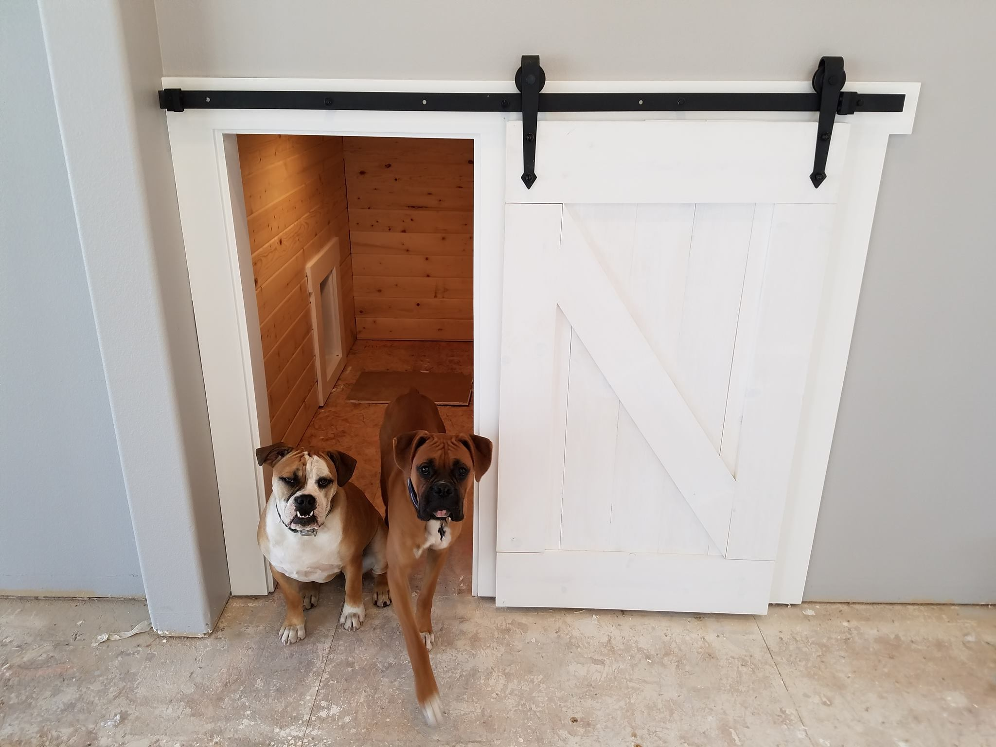 Dog Kennel Doors 20 Adventiges For Your Pets Interior