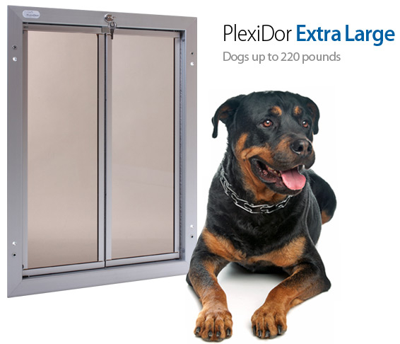 Top 23 Best Large Dog Door for Your Home