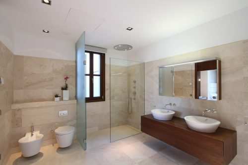 glass-wall-divider-bathroom-photo-14