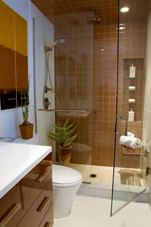 glass-wall-divider-bathroom-photo-19