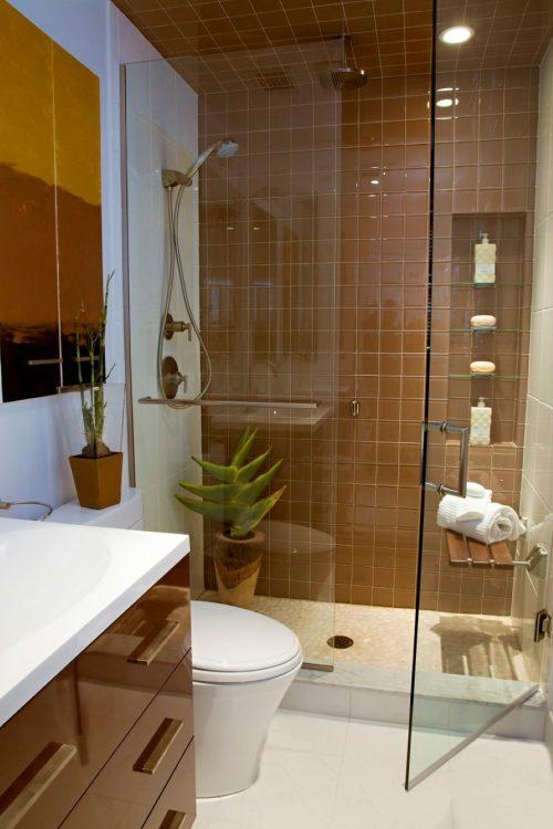 glass-wall-divider-bathroom-photo-19