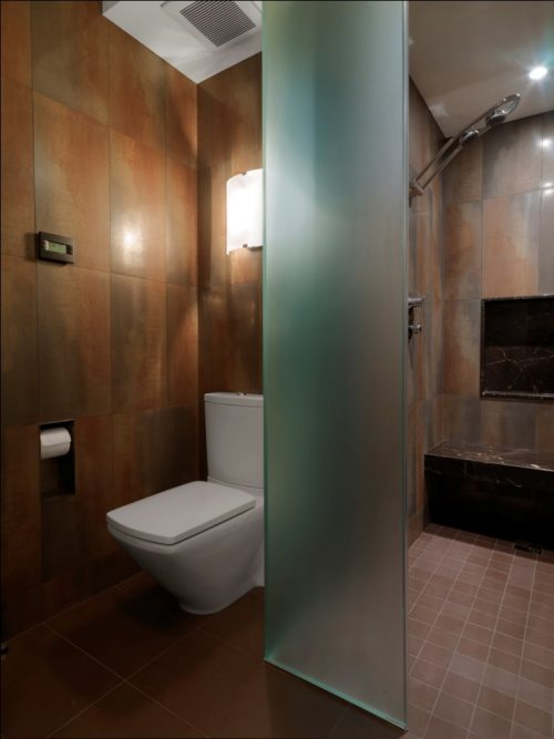 glass-wall-divider-bathroom-photo-20