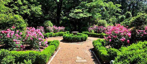 victorian-garden-design-ideas-photo-17