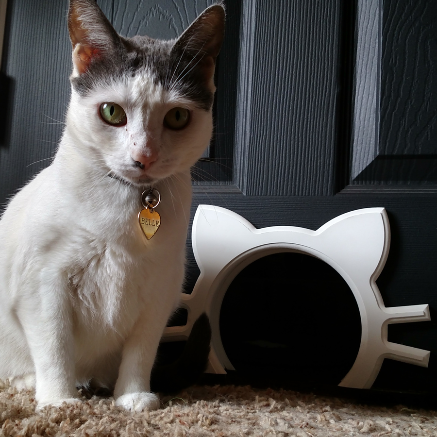 Best Cat Doors – Make the Right Choice