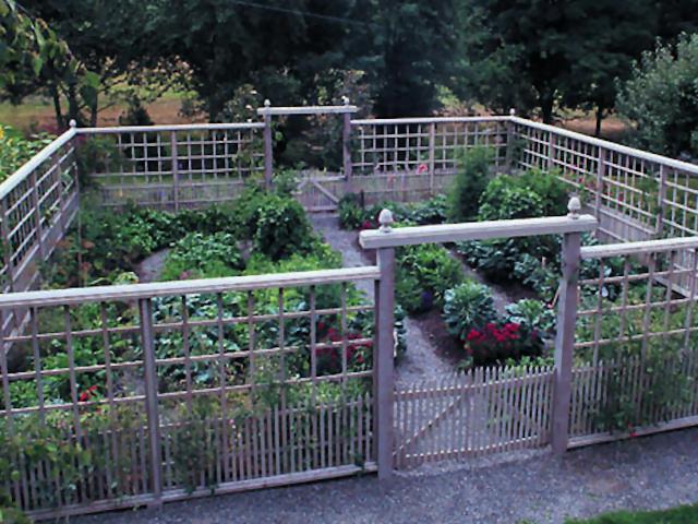 deer proof fence ideas photo - 1