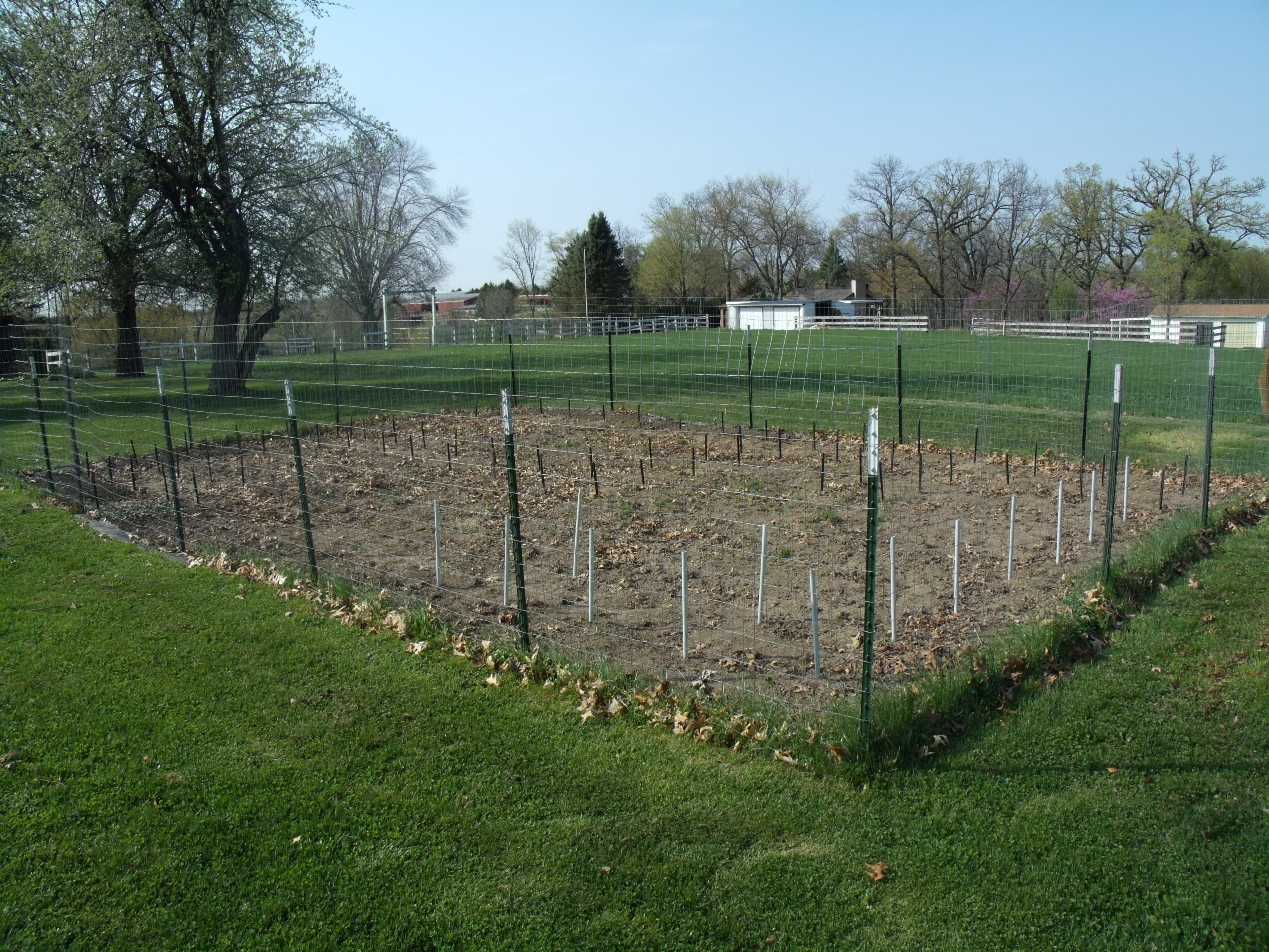 deer proof fence ideas photo - 5