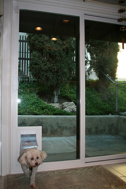 dog door for sliding door photo - 4