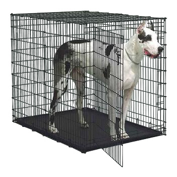 double door dog crate photo - 2