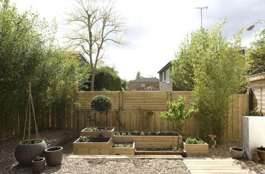 eco garden design ideas photo - 2