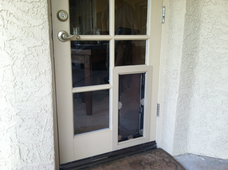 french doors with dog door photo - 7