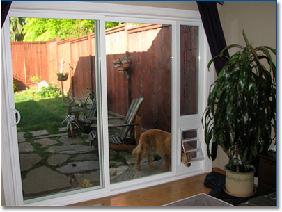 Glass Dog Door 20 Ways To Make To Make The Life Of Your Pets