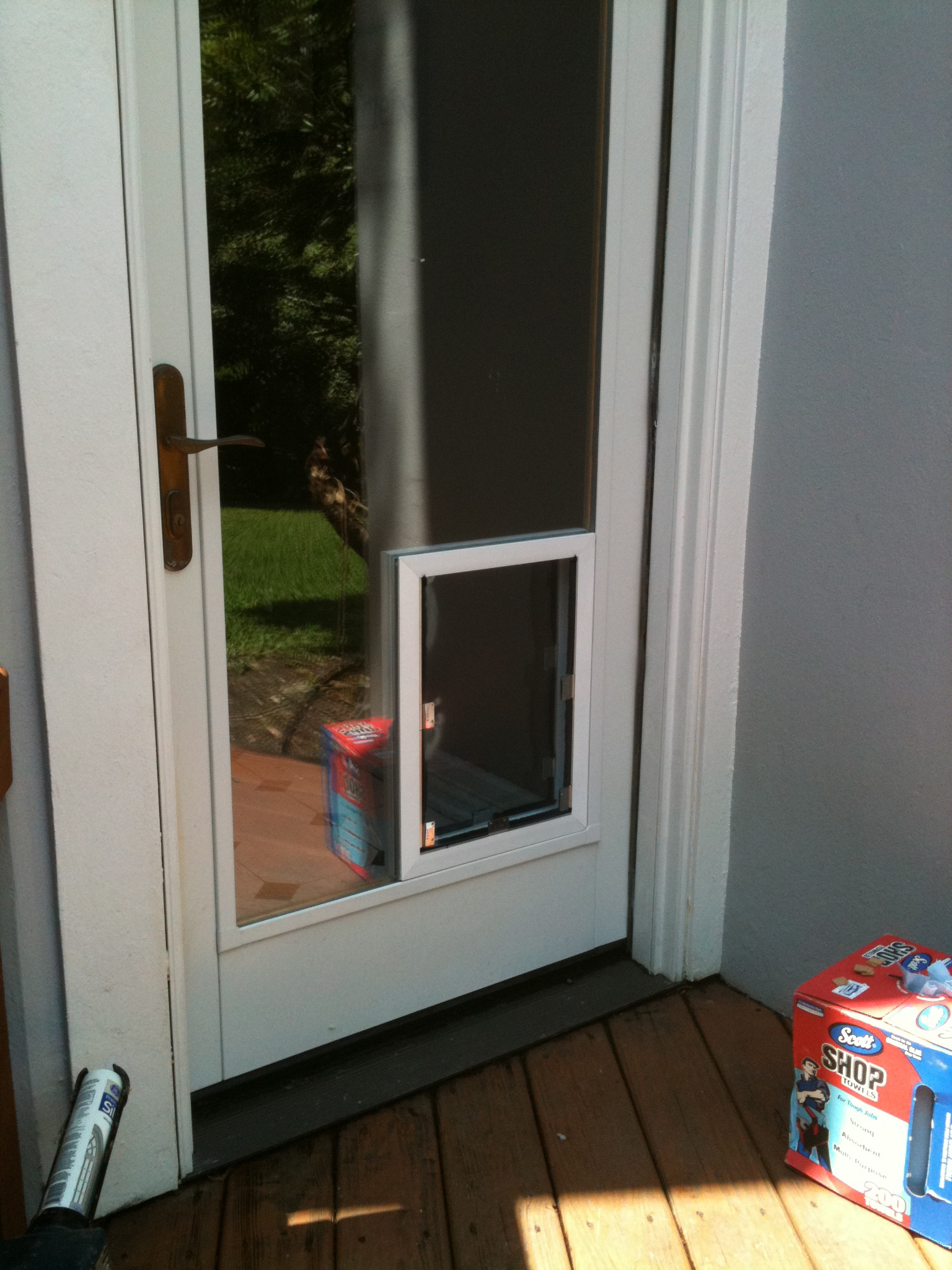 glass dog door photo - 9