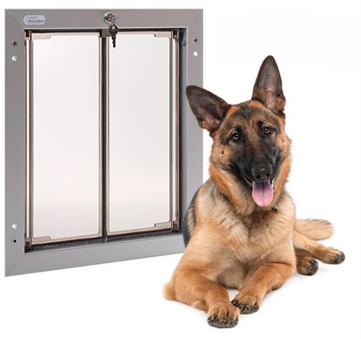 large dog door photo - 10