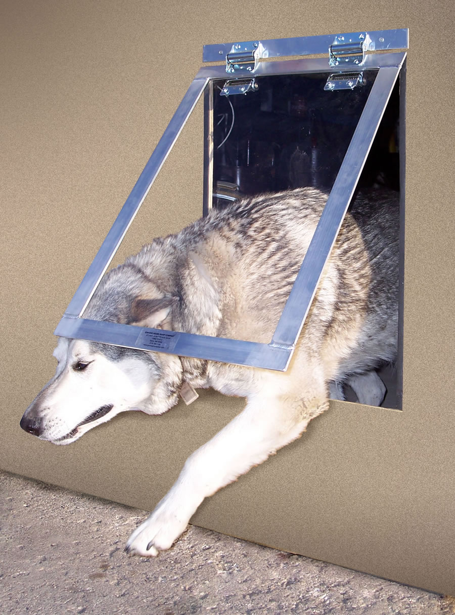 large dog door photo - 5