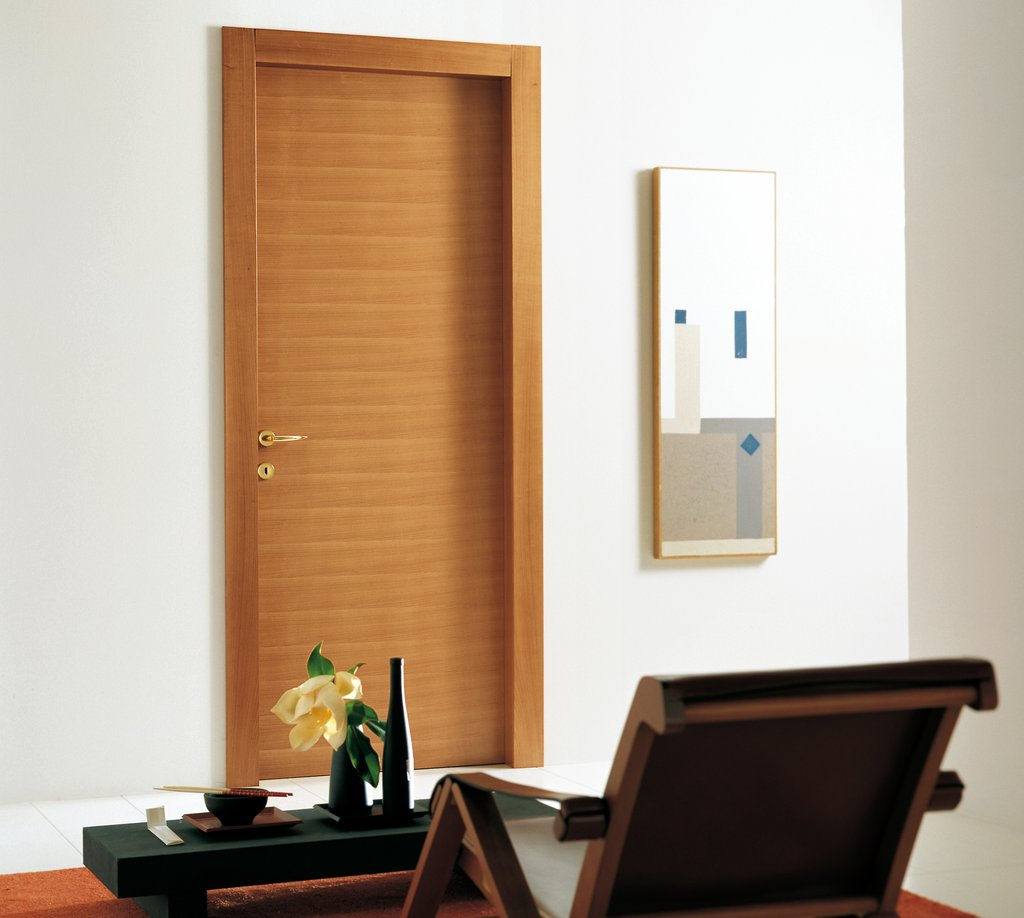 modern door designs for rooms photo - 5