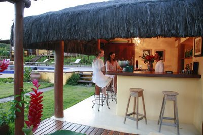 outdoor pool and bar designs photo - 3