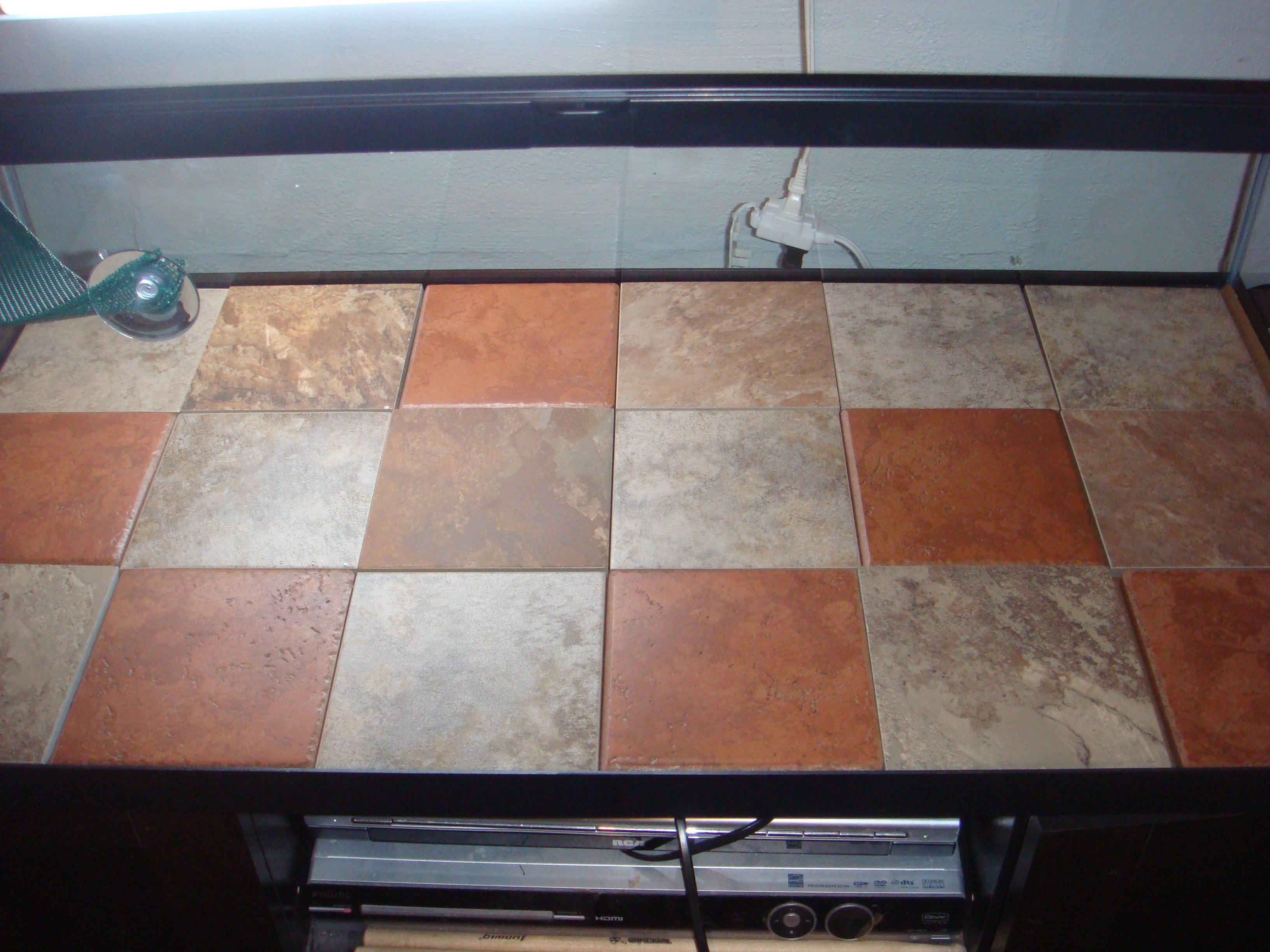 slate tiles for bearded dragons photo - 5