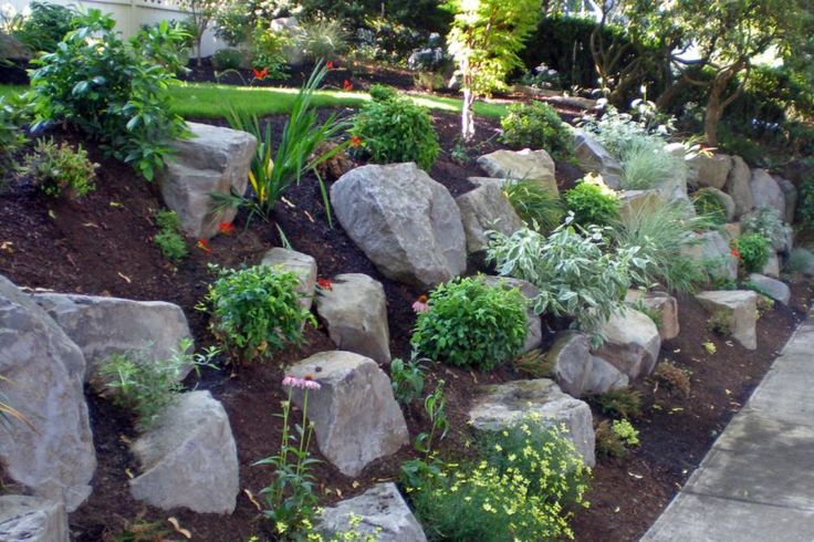 sloped rock garden ideas photo - 5