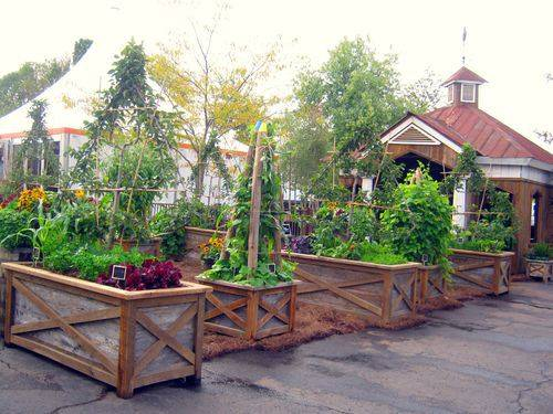 vegetable garden box ideas photo - 2