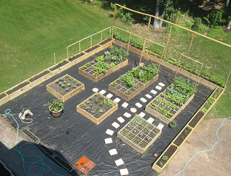vegetable garden box ideas photo - 6