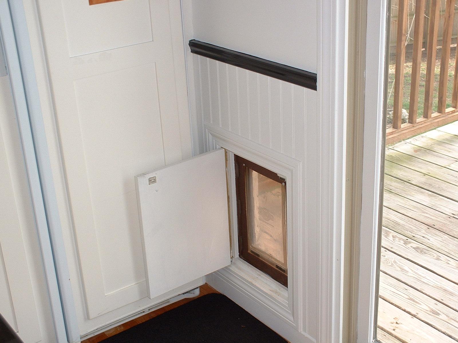 wall dog door photo - 7